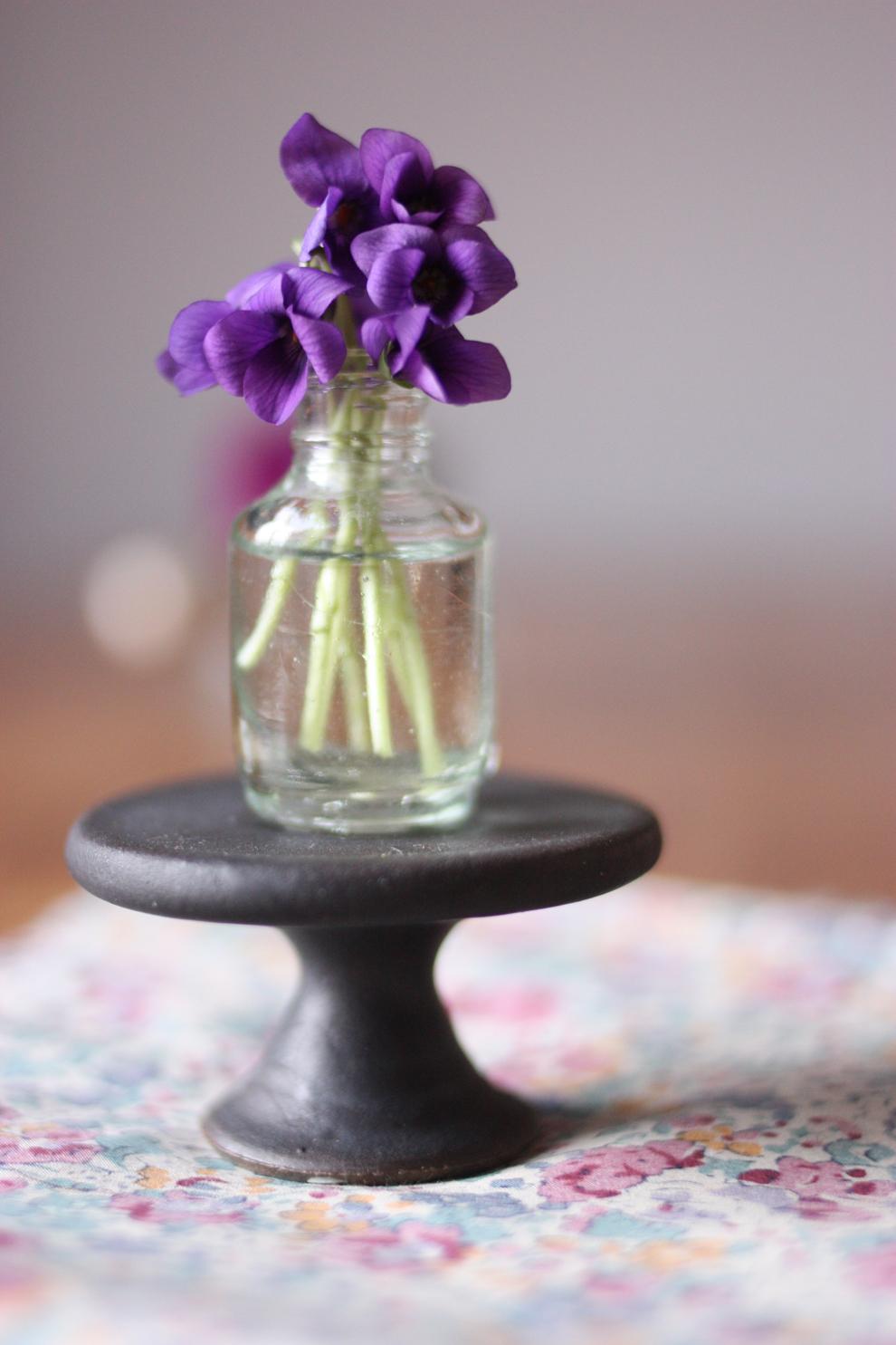 mini_violets
