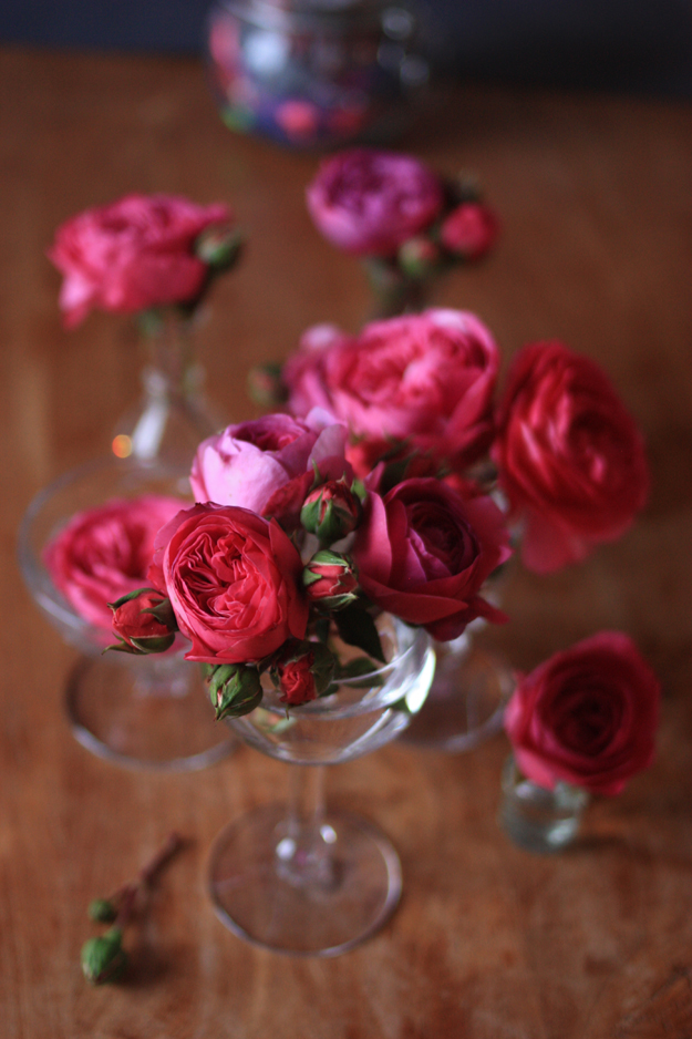 red_garden_roses_3