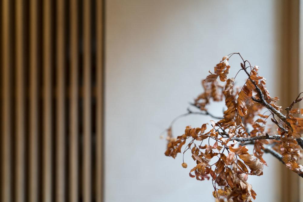 porteous-studio-fiona-burrage-photographer-norwich-edinburgh-interiors-slats.jpg