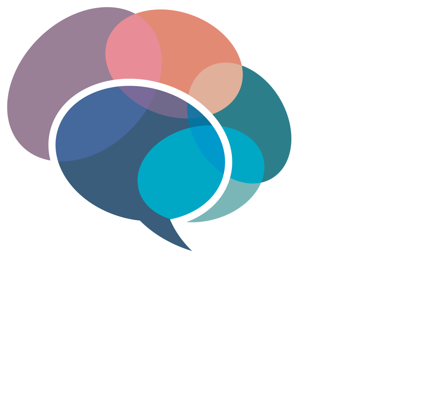 The Speech Group