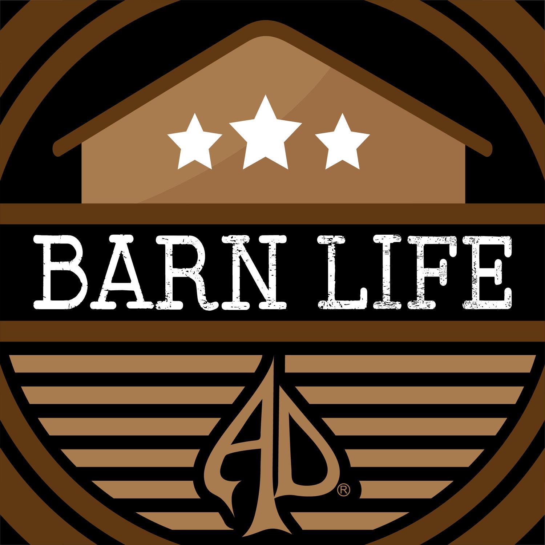 Austin Dillon's Barn Life - NASCAR & More
