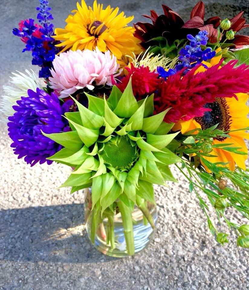 Proclamation Flowers Blog News Updates