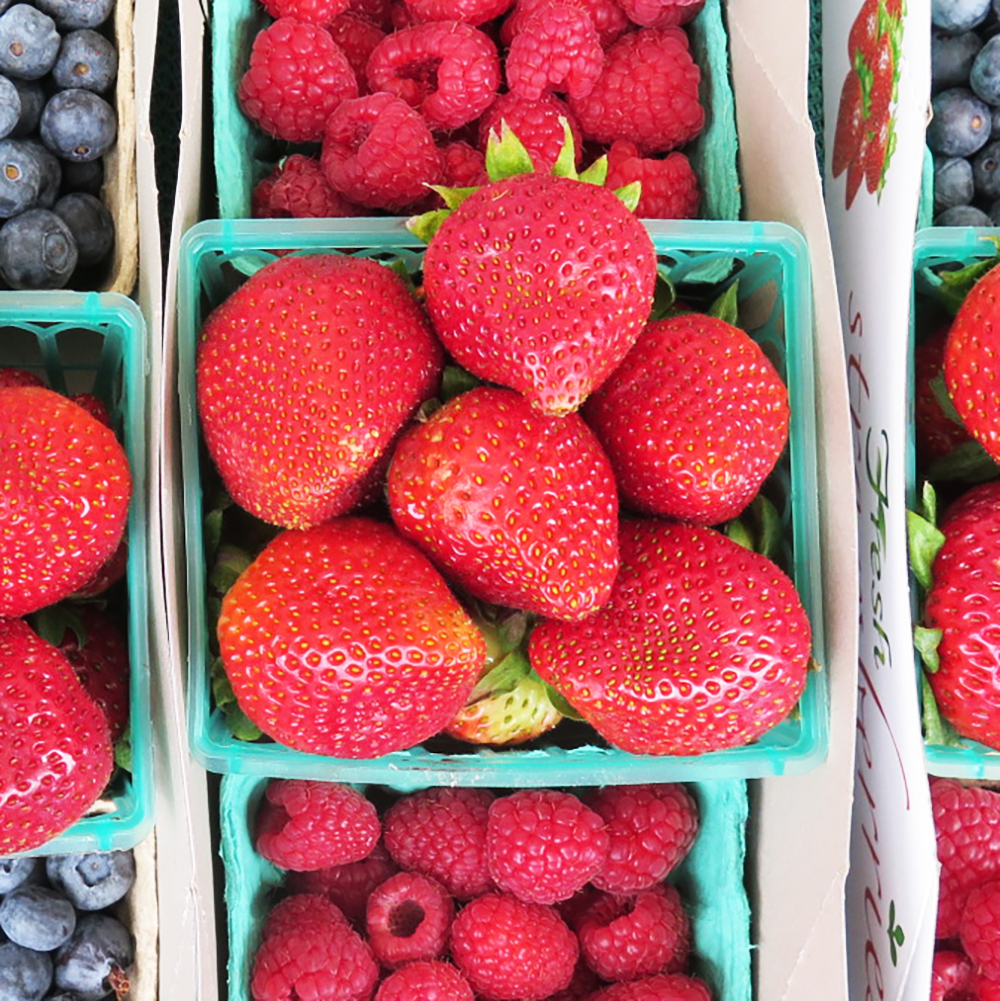 Visit every Tuesday at 11:00 AM for fresh, locally-grown fruits, vegetables, flowers + plants from over 45 vendors. Organic too! Enjoy a variety of artisan hot and prepared foods. Fun for the whole family with live music + kids activities. -