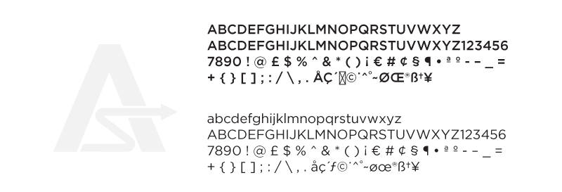 AccuRisk-Fonts.png