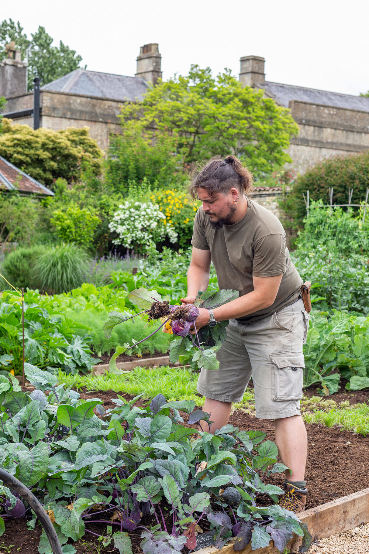 A master at work. Ollie Hutson, senior kitchen gardener