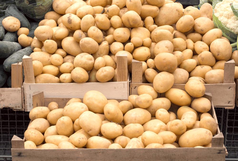 krompir-91.png
