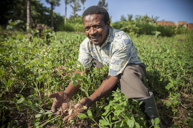 Wefarm | Farmer-to-Farmer Digital Network