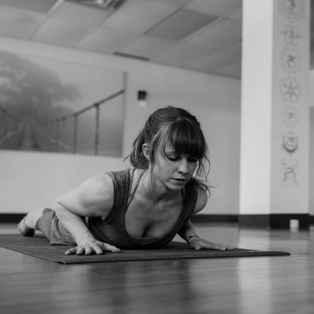 the intro to yoga workshop is an eight week series of workshop style classes structured for the absolute beginner.  We will cover fundamental poses, transitions, alignment, and breath techniques so that practitioners can step into a group setting confidently and with the tools necessary for a safe and supportive practice.