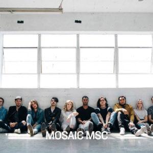 msc-300x300.jpg