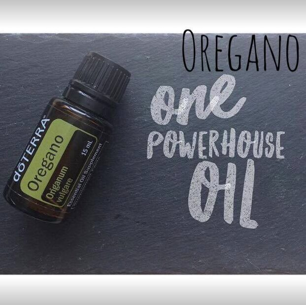 Dive in to Oregano Oil
