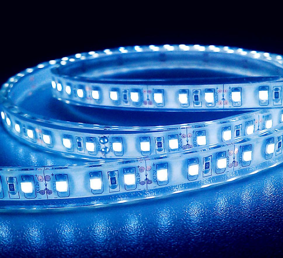 strip - blue.jpg