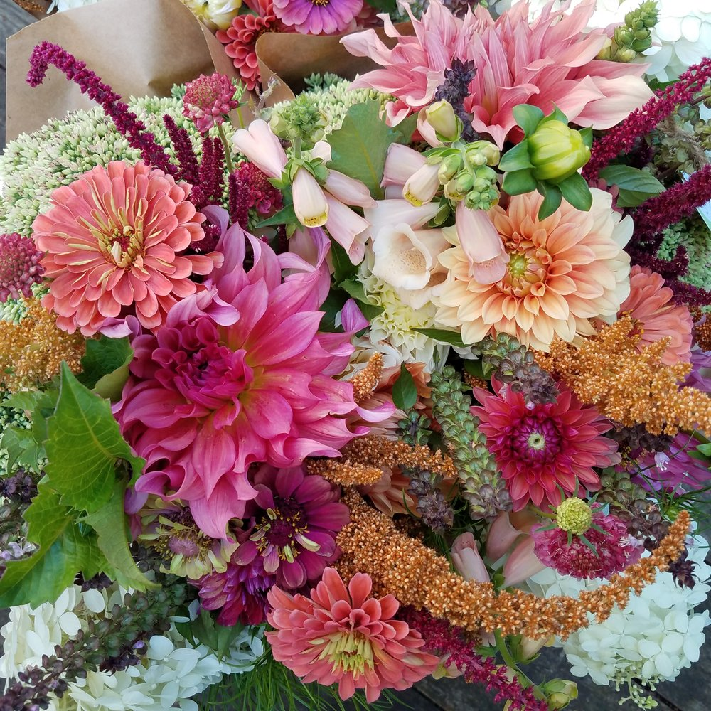 6 Weeks of Flowers(180.00) - A sample of our flower bouquets in August include:Peach Foxglove, Dahlias in shertbet tones, burgundy and brown Amaranth, coral and Queen Lime Zinnia, Autumn Joy Sedum, Basil, Pink Scabiosa, and Limelight Hydrangea.