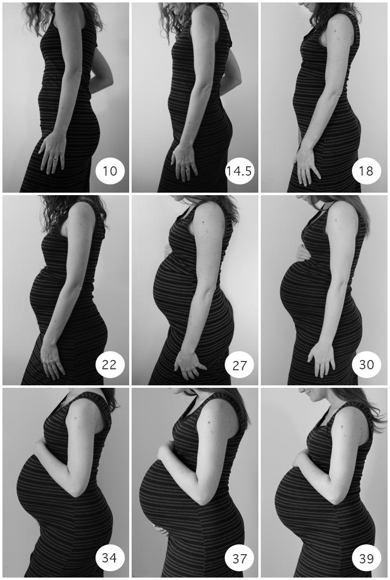 Belly-1