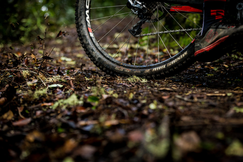 CamMackenziePhotos-1550.jpg
