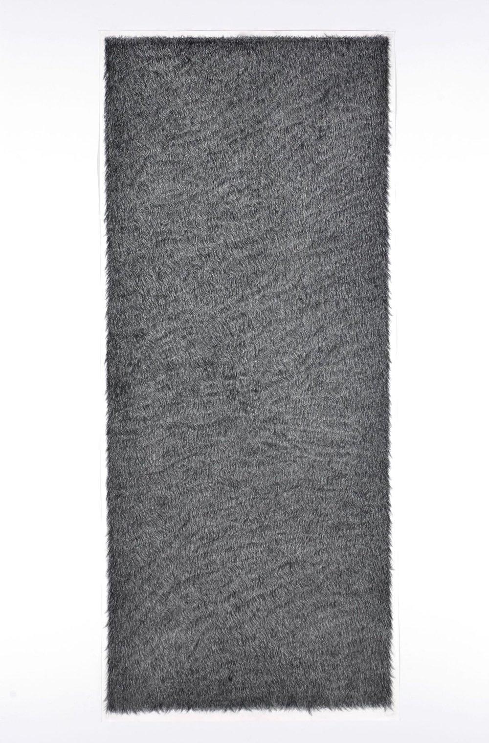 Piel 1    Carboncillo sobre papel    213 x 92 cm.2004