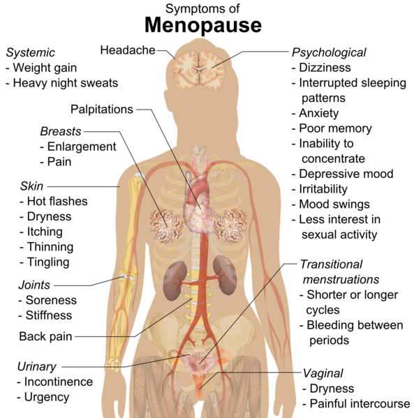 menopause-symptoms.png
