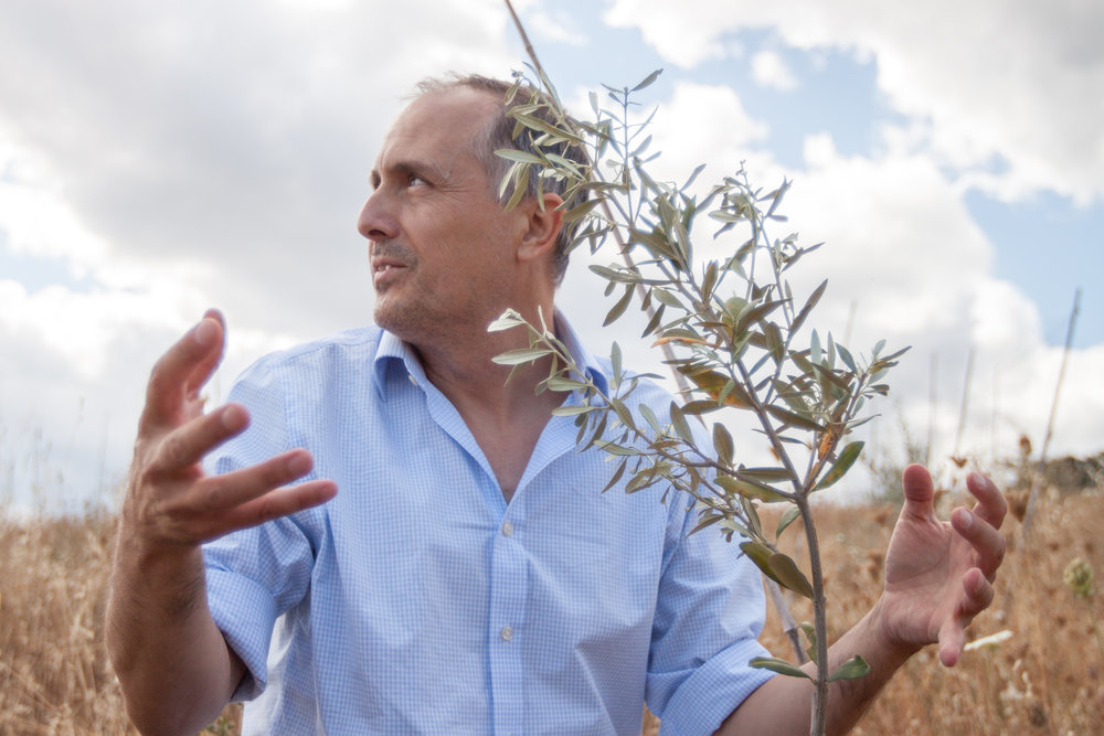 Owner Bogdan Caceu with recently planted olive plant.