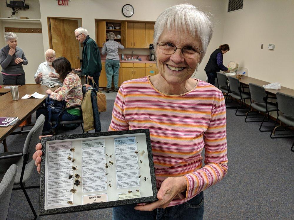 Oregon Bee Atlas volunteer Debi Brimacombe holding an education display of Common Bees of Columbia County.