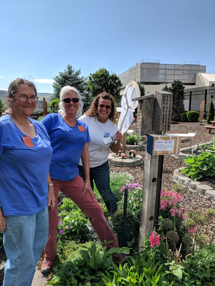 The Gorge Collection Team's urban sample location; the magnificent and interactive DIG Master Gardener's public garden on the bank of the Columbia in the Dalles.