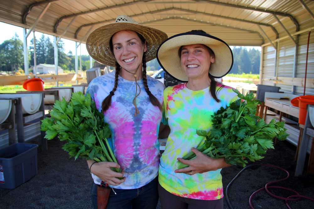 Run by the East Multnomah Soil and Water District, Headwaters hosts 15 independent small farms that grow everything from vegetables and cut flowers to medicinal herbs.