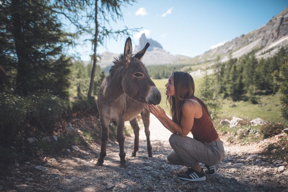 MegKee_Dolomites.jpg