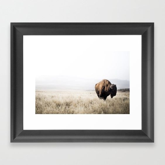 Bison Stance Art Print - Society 6