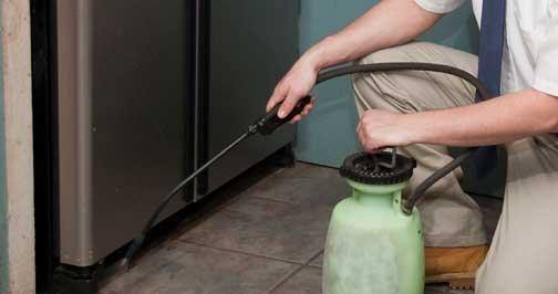 Effective exterminator in Huntington, NY