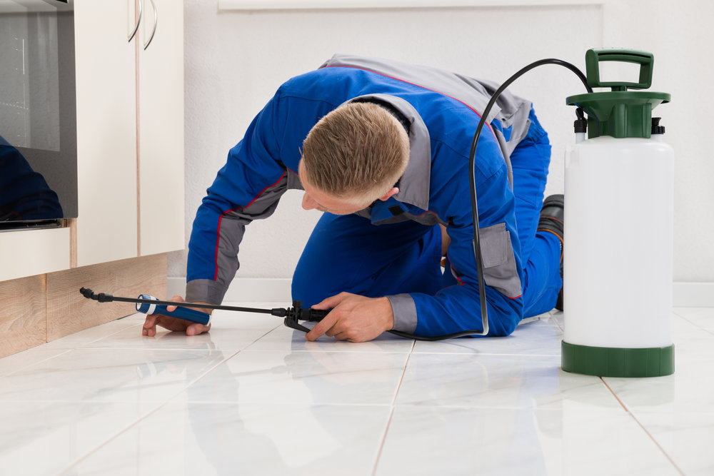 How Residential Exterminators Keep Your New Jersey Home Pest Free