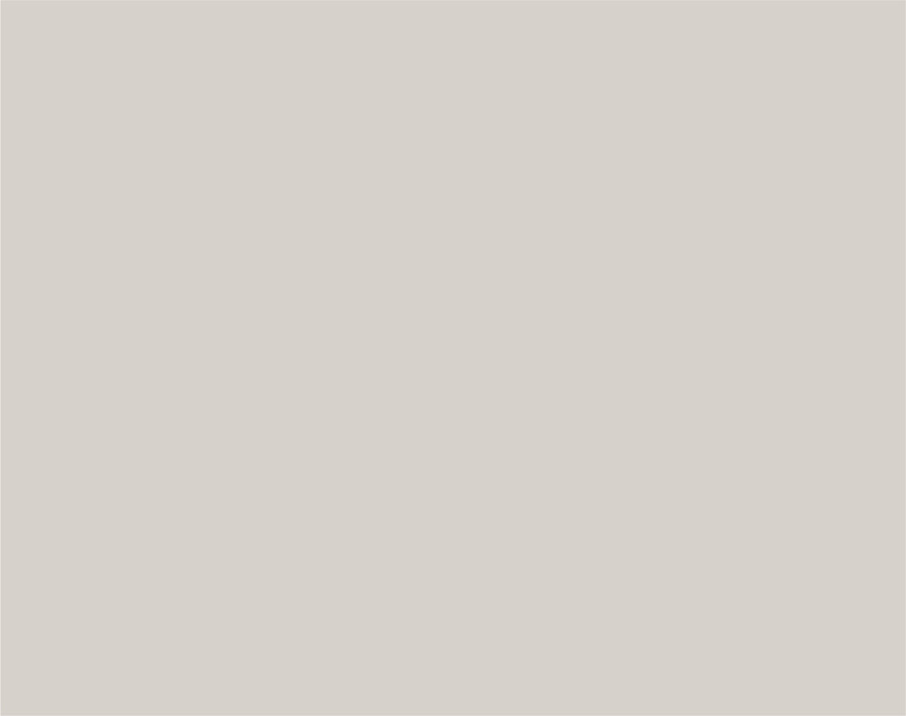 Pantone  Warm Gray 1 C  CMYK: 3 / 3 / 6 / 7  RGB: 215 / 210 / 203  Hex: #D7D2CB