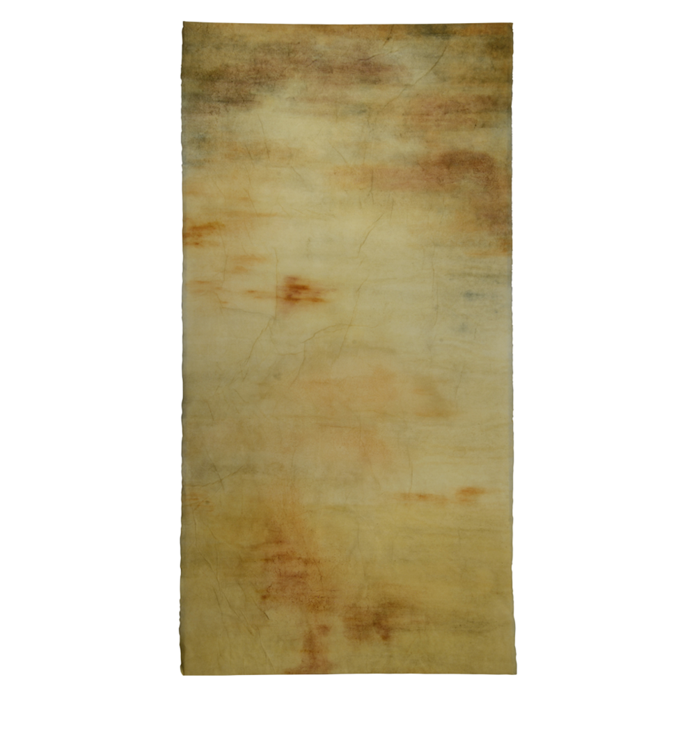 Illumine II , mulberry paper, sea water, soil, white clay, slate pigment, woad, yellow, orange and red ochre, 2015