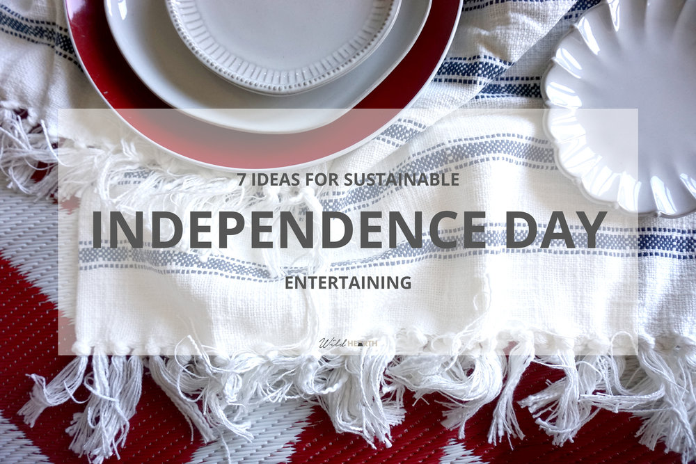 Independence Day Pin 1.jpg