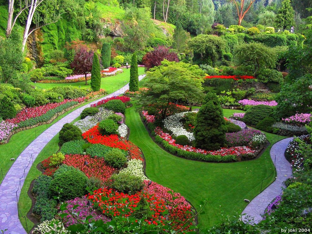 dreams.metroeve_garden-dreams-meaning.jpg