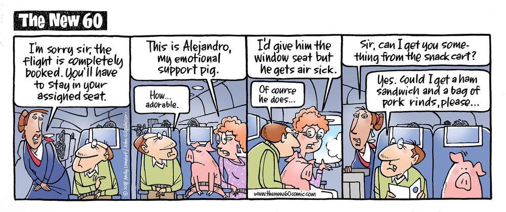 support pig_WEB.jpg
