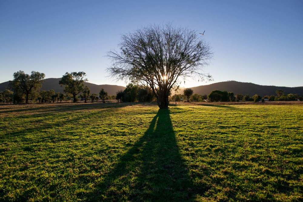 This is what Bingara looks like in the morning