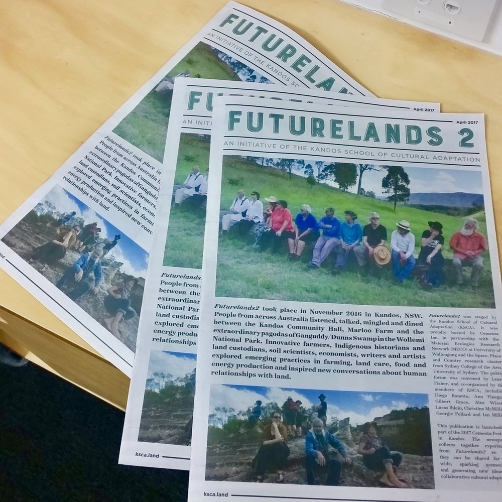futurelands newspaper pic.jpg
