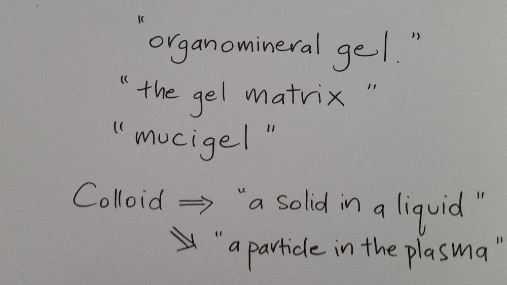 gel words humus.jpg