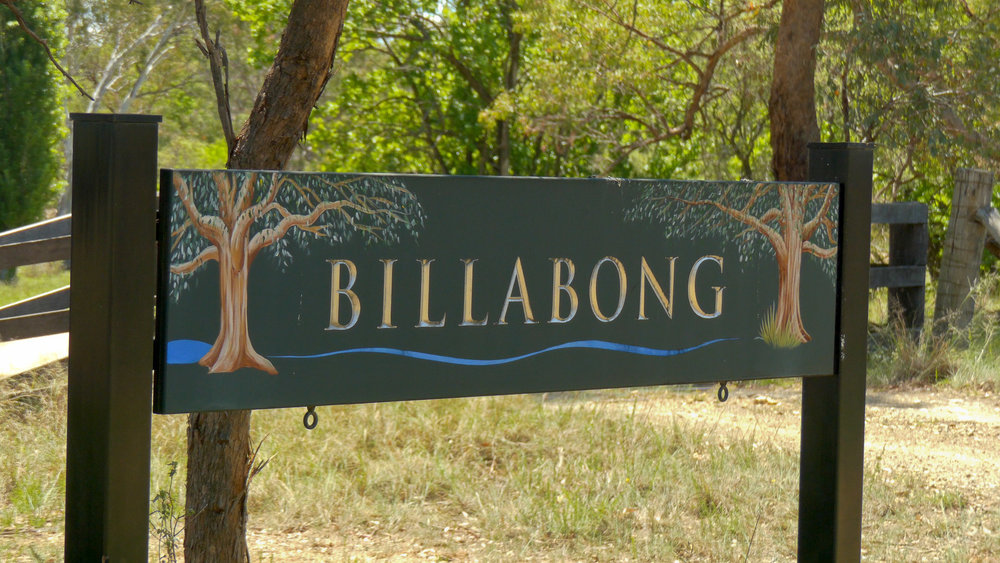 Billabong still (11 of 12).jpg
