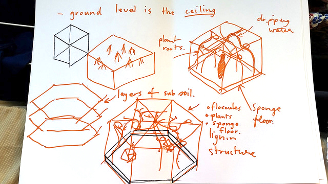 soil sketch 5.jpg