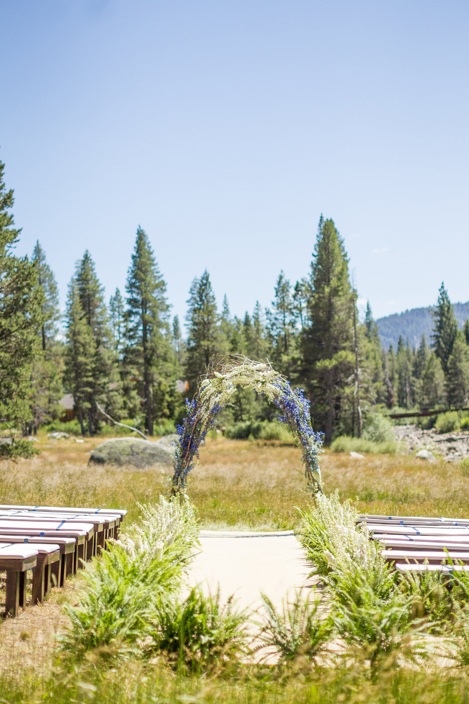 Love In Tahoe -