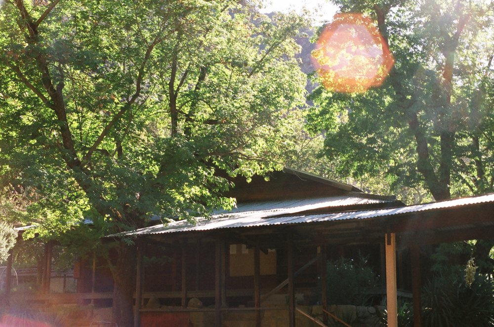 Tassajara Mountain Zen Center Zendo, photo by Fletcher Tucker