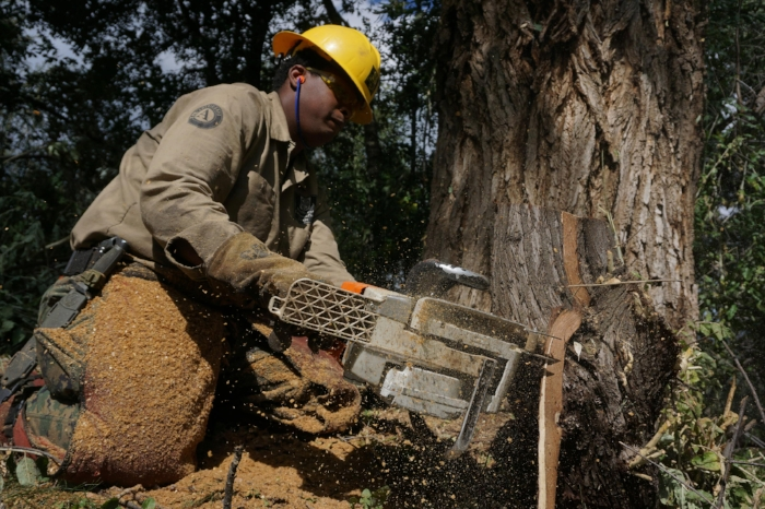 A Southwest Conservation Corps in the field. [Photo courtesy of Southwest Conservation Corps]