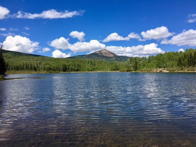 Woods Lake.