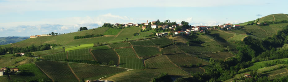 The vineyards of Farm Stella are located in Neviglie, a small town surrounded by the municipalities of Barbaresco, Neive, Mango and Treiso, in the heart of the area of Muscat production