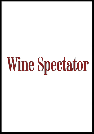 wine spectator vinous+2010+premio+cantina+rizzi.jpg
