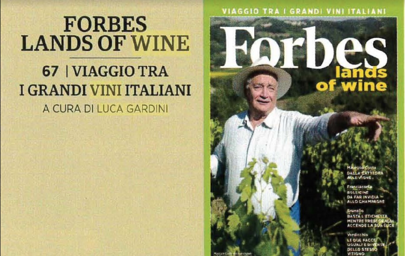 lands of wine articolo grandi vini italiani forbes italia