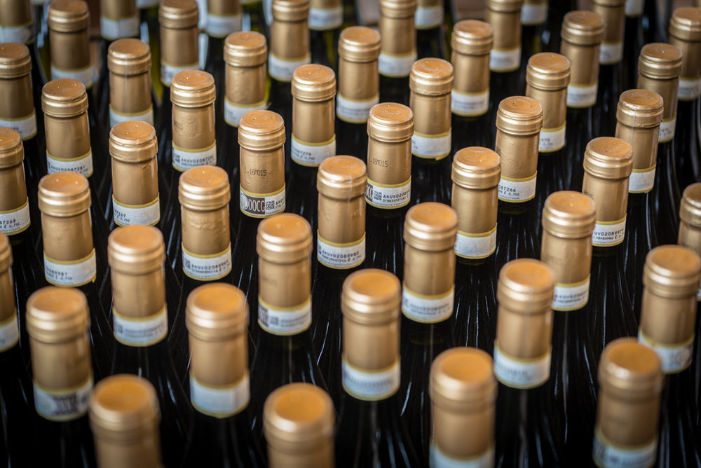 azienda+vitivinicola+rizzi+treiso+cuneo+piemonte+cantina+rizzi+langhe+roero+wine+barbaresco+barolo+dolcetto+barbera+arneis+spumante+piemonte+vino+degustazioni+acquisto+bottiglie+di+vino+langa_1558.jpg