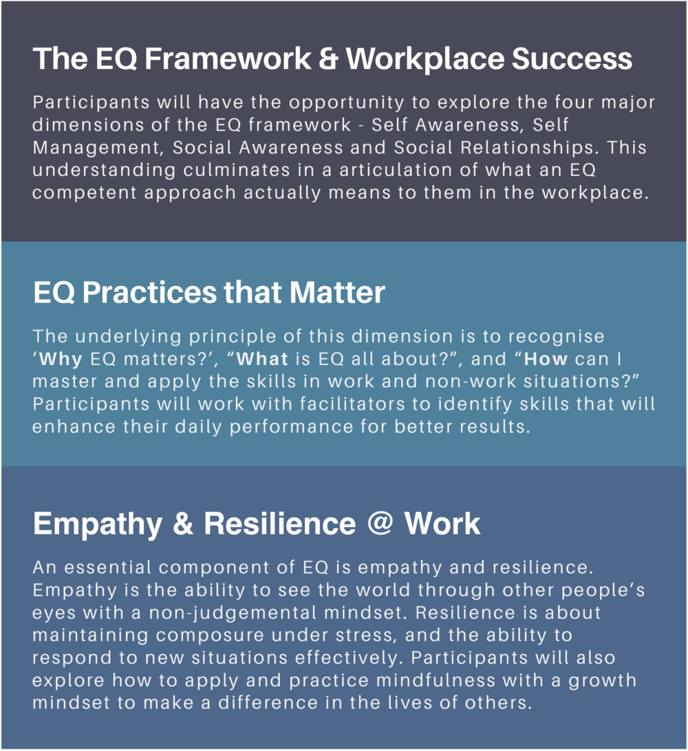 eq skills workshop programme for work training singapore emotional intelligence