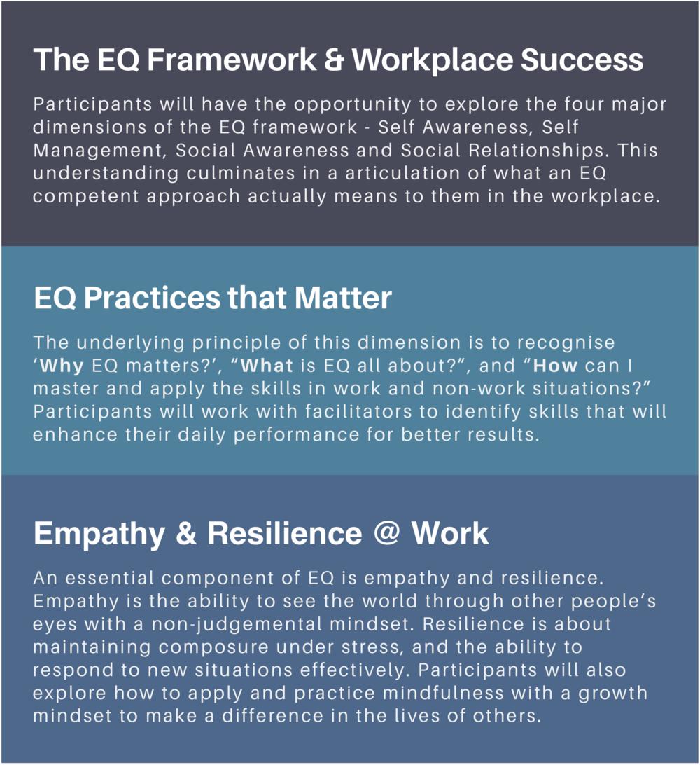 eq skills workshop programme for work training singapore emotional intelligence