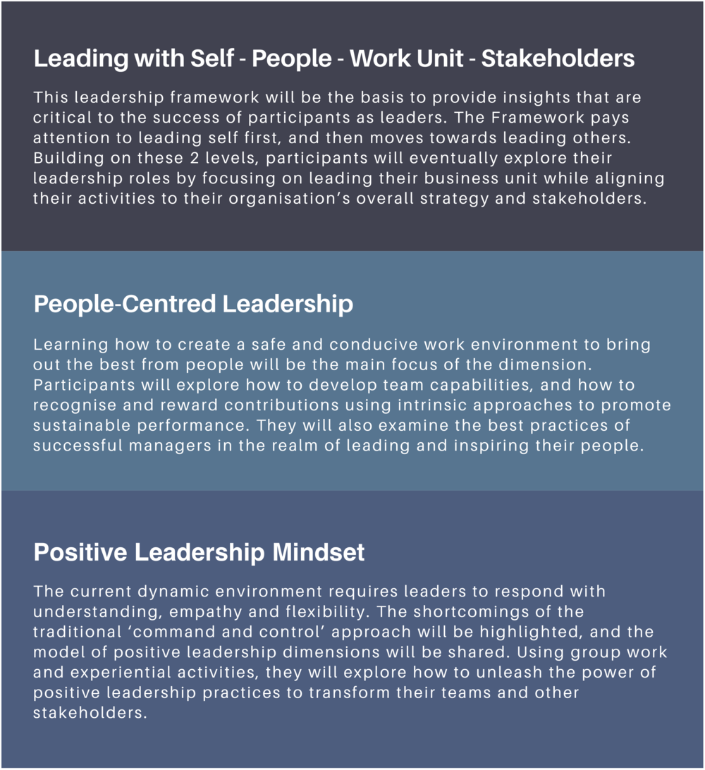 leadership skills leaders managers training programme workplace big 5 VUCA performance