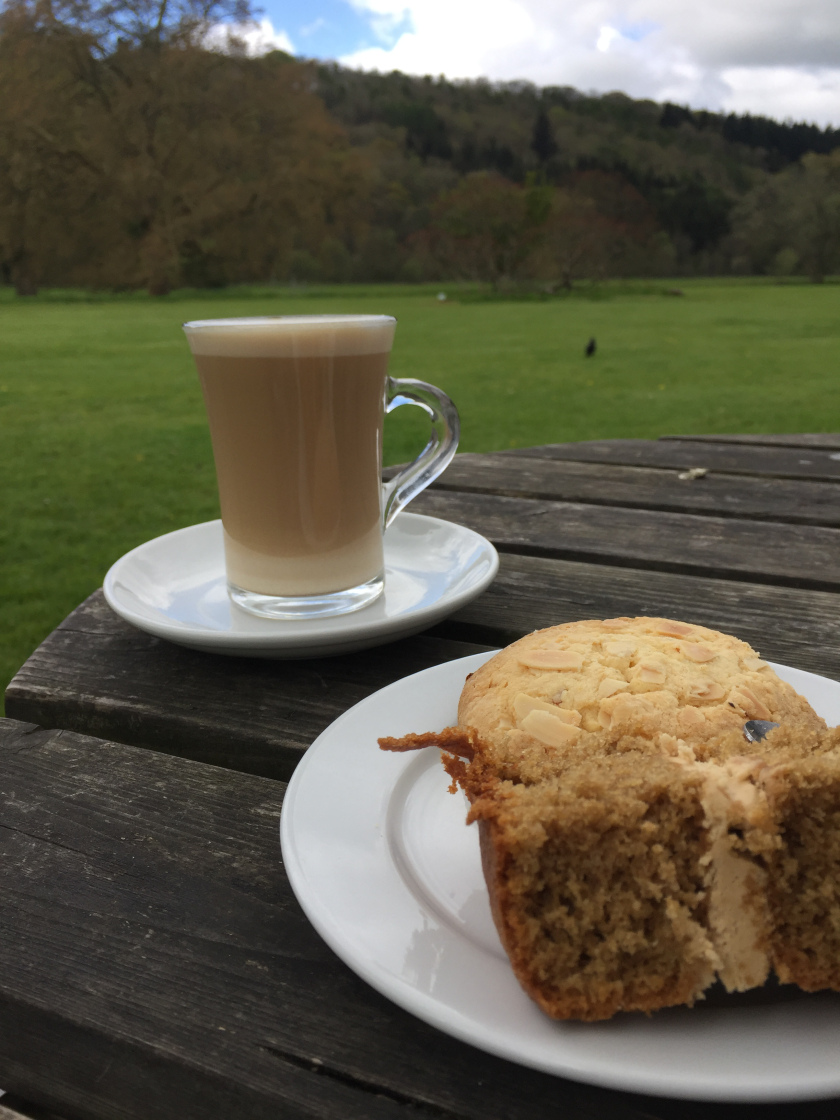 Coffee and cake at Hampton Court
